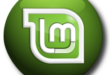 Cinnamon Desktop Logo - blackMORE Ops