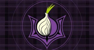Installing Tor in Kali Linux - blackMORE Ops - 2