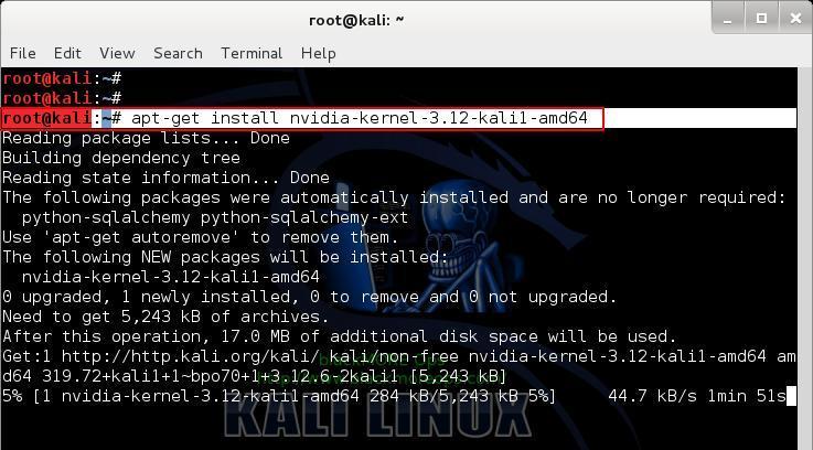 Install NVIDIA Kernel - 2 - Install proprietary NVIDIA driver on Kali Linux - blackMORE Ops