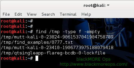 Practical Examples of Linux Find Command, Find Command Examples Find all empty Files and directory - 5 - blackMORE Ops