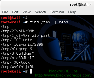 Practical Examples of Linux Find Command, Find Command Examples for Ubuntu, Mint, Debian, CentOS, Fedora and all Linux distributions - 1 - blackMORE Ops