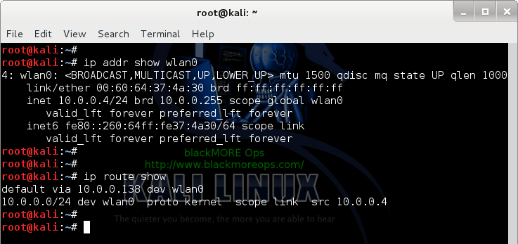 Connect to WiFi network in Linux from command line - Check Routing and DHCP - blackMORE Ops - 8