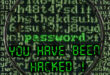 Website Password hacking using WireShark - blackMORE Ops - 10