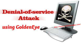 DoS website in Kali Linux using GoldenEye - blackMORE Ops