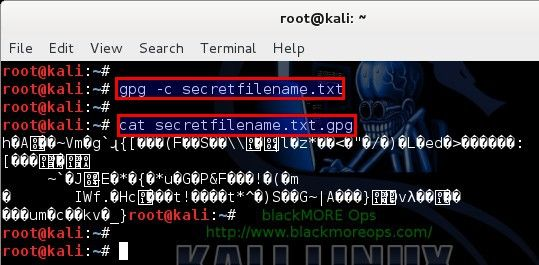 Encrypting and decrypting files with password in Linux - blackMORE Ops