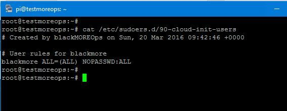 Configure sudo access for single user and group with NOPASSWORD