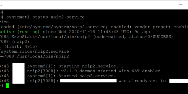 How to install the noip2 on Ubuntu and run via systemd systemctl (noIP Dynamic Update Client)